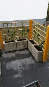 Balkon Sichtschutz Efeu Hecke Praktischer Sichtschutz In Ausf