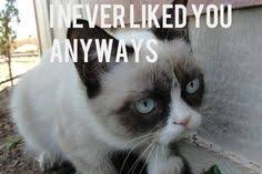 Grumpy Cat quotes on Pinterest | Grumpy Cat, Grumpy Cat Christmas ... via Relatably.com