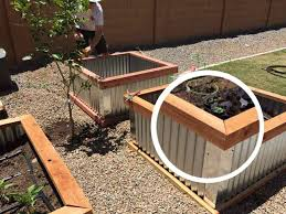 corrugated metal raised garden beds. Raised Bed Garden Boxes Diy Beds With Corrugated Metal R