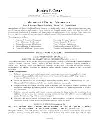 Best Solutions Of Resume Template Examples In Word Format Subway