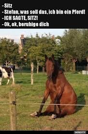 Sitz Stefan Was Soll Das Ich Bin Ein Pferd Lustige Bilder