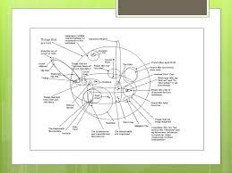John Venn Venn Diagram Why Did John Venn Invent The Venn Diagram Kadil