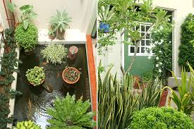 Small Picture 5 Small Space Gardening Tips RL