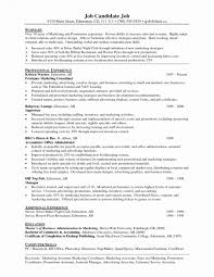 Travel Agent Resume No Experience