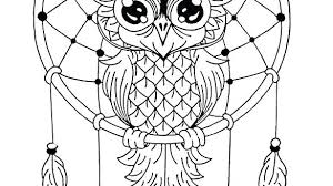 owl coloring book pages owls for s by page