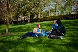 outdoor campus life blossoms in summer for soaking up rays people watching reading contemplation or just plain gazing at the sky abound enjoy our photo essay or come see for yourself