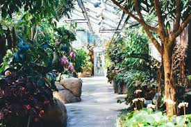 what began as a modest farm market and soon after a whole vegetable and flower delivery business has become one of new england s largest garden centers