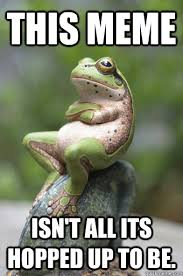 this meme isn't all its hopped up to be. - Unimpressed Frog ... via Relatably.com