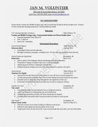 Free Current College Student Resume Template Picture Professional