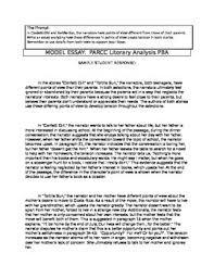 8th Grade Essay Examples Parcc Literary Analysis Teacher Model Example Essay