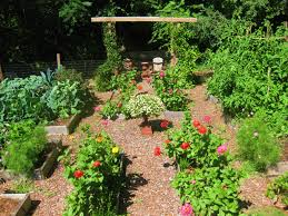 Kitchen Garden Vegetables What Would You Plant In Your Subsistence Garden