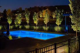 landscape lighting trees. low voltage landscape lighting transformer with swimming pool trees uplighting