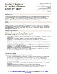 Customer Services Experience Director Of Customer Service Resume Samples Qwikresume