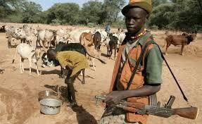 BREAKING: Fulani herdsmen invade Akure South LG secretariat, sack workers