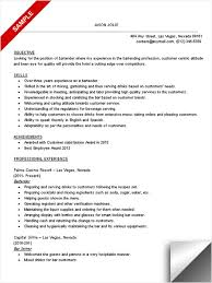 Sample Bartender Resume Professionally Written. Resume Template