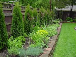 Best 25+ Landscaping along fence ideas on Pinterest   Garden ideas along a  fence, Bed edger and Fence landscaping