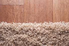 Carpet Cleaning : How to Remove Mildew & a Musty Smell From Carpet