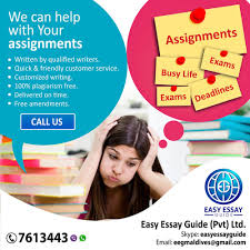 help assignments and dissertation ibay