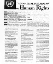 codex humanum universal declaration of human rights universal declaration of human rights preamble