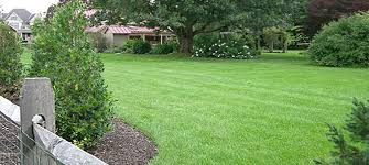Backyard Landscape Designs Delectable Landscaping Lehigh Valley Lawn Service R And R Lawn Service Inc