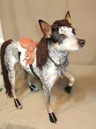 Perfect 62 Of The Best Dog Costumes For Halloween Via Brit + Co.