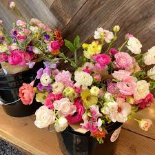 Full Bloom Flower Farm and Floral Design - Restocked with the last ...
