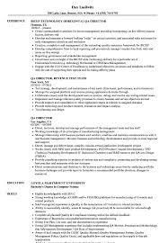 Qa Director Resume Samples Velvet Jobs