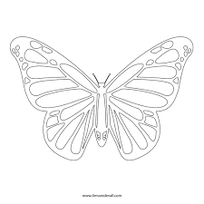 Butterfly Outline Coloring Page At Getcolorings Com Free Printable