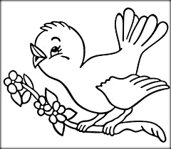 Small Picture Bird Coloring Page Birds How To Draw Bird Coloring Page Birds