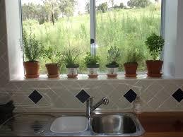 indoor herb garden kit black