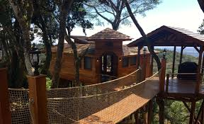 luxurious tree house. Lucero Treehouse Entrance Luxurious Tree House