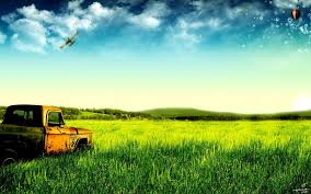 green pastures and old trucks wallpaper