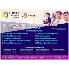 Professional Skill Set Skill Set Training For Professionals And Executives In The Workplace