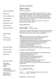 Job Cv Template Examples Cleaner Free And Fully Editable Templates