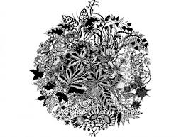Symmetry Symmetrical Illustration Black White Image 618675 On
