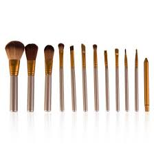 makeup brush set with pure color pouch in south africa