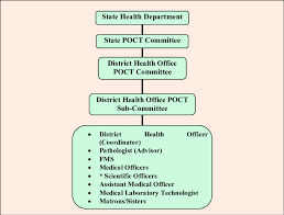 Committee Organization Chart District Health Office Poct Committee Organization Chart