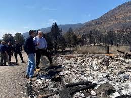 California Governor Newsom Surveys ...