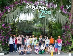 TRẠI HÈ ĐẶC BIỆT DÀNH CHO LỨA TUỔI THIẾU NHI TẠI SINGAPORE - MALAYSIA | Tư  vấn du học - Học bổng - Sunmoon