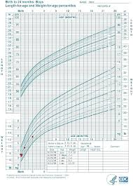 Cat Weight Chart By Month 42 Prototypal Cat Weights By Age Chart