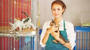 15 best part time jobs for high school students 1 animal shelter worker