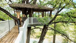 tree house plans for two trees. Delighful Trees Tree House Plans Two Trees Lovely These Amazing Texas Treehouses Take  Glamping To New Heights Information  In For R