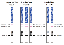 First Response Pregnancy Accuracy Chart Bfp Early Pregnancy Test Strips