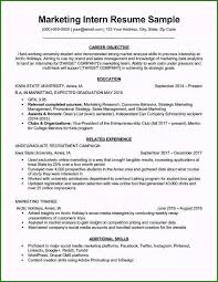 Astounding Computer Science Internship Resume Sample For