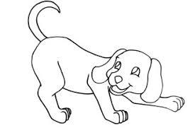 Honden Kleurplaat Schattige Dieren Cute Puppies Pictures Wallpapers