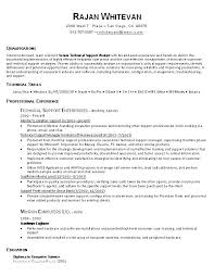 It Resume Examples Extraordinary It Resume Examples Design Templates