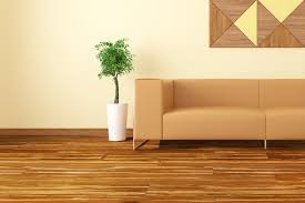 bamboo floors frequently asked questions