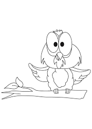 Small Picture funny big eye owl coloring page Download Print Online Coloring