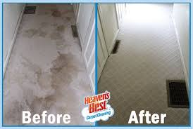 why should i select heaven s best carpet cleaners to clean my carpets