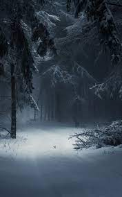 Winter Black Wallpapers posted by ...